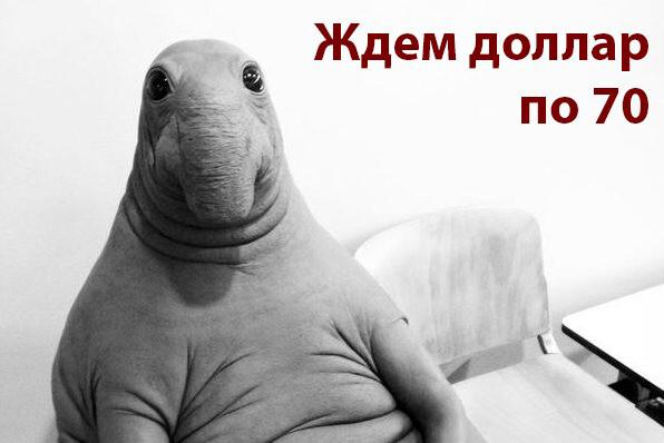 Прогноз по рублю и доллару на 2021 год.